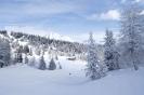 Beigarterhof - Im Winter_17